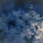 congés d'hiver